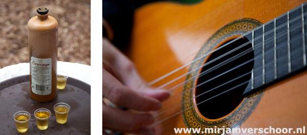 ©MirjamVerschoor gitaar foto